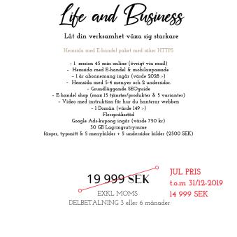Hemsida & E-handel paket - Hemsida & Ehandelpaket komplett med 1 års abonnemang