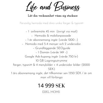 Hemsida & E-handel paket - Light Hemsida utan e-handel (http)