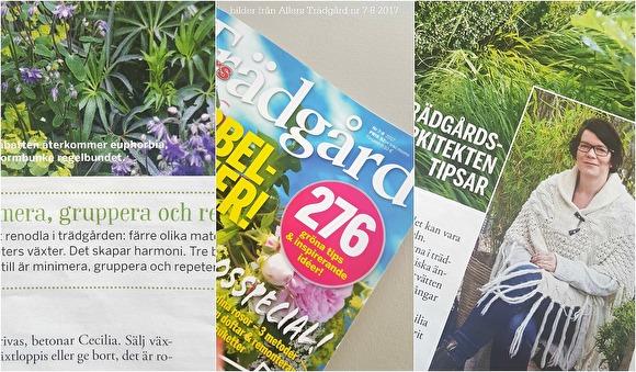 Att länka till en artikel eller ett reportage är ett exempel på inslag på en hemsida. De här bilderna kommer från senaste numret av Allers Trädgård (nr 7-8 2017), där trädgårdsarkitekt Cecilia Tidstrand från form&flora Trädgårdsdesign gav bra tips! Det här underlaget har jag skapat - som ett exempel!