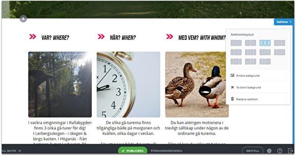 """När du klickar på pilen """"Sektion"""", kan du välja utseende för din hemsida. För att sedan fylla den med bilder (eller text, dokument, rubriker etc."""