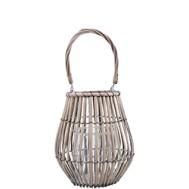 Lantern Willow
