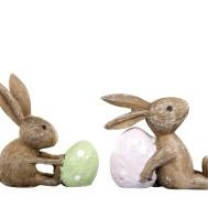Kaniner med ägg