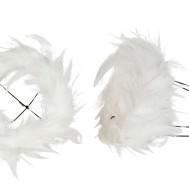 Bukettrede fjäder vit