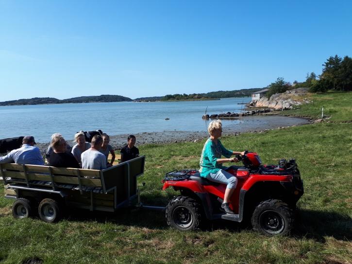 Utflykt med fyrhjuling och kärra till strandängarna