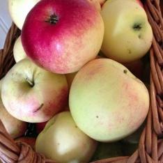 Troa äpplen