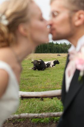Ann&Thomas kyss kohage