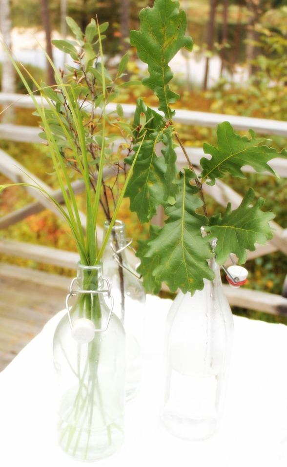flaskor med gröna kvistar! Miljövänlig bröllopsdekor