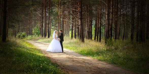 sagobröllop, miljövänligt, ekologiskt, skogsbröllop