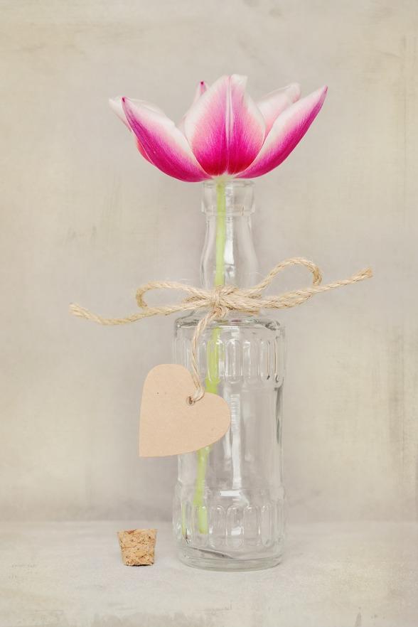 med en enkel tulpan! Använd rättvisemärkta blommor!