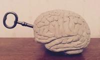 Hjärnan Framgångare ljusgrå