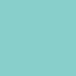 Träskylt - Eget namn/ord - 20cm Mint