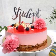 Studentskylt - Silver