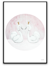Princess swans