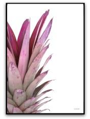 Poster - Ananas
