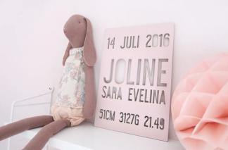Namn & födelsetavla - 19X27,5cm Gammelrosa