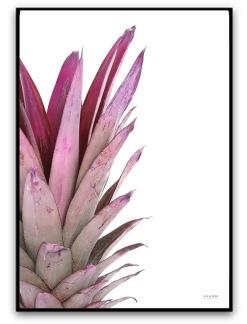 Poster - Ananas - A4 matt fotopapper Rosa