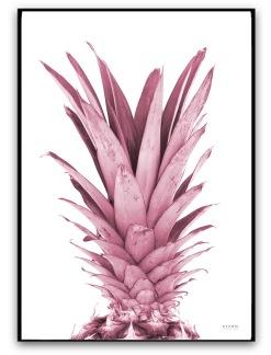 Poster - Ananas - A4 matt fotopapper Gammelrosa