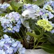 Bevattning för blommor