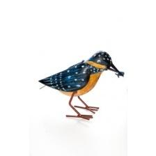 Plåtfågel orange