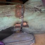 Skulpturen tas isär i de gamla skruvskarvarna för att bevara det gamla monteringssättet.