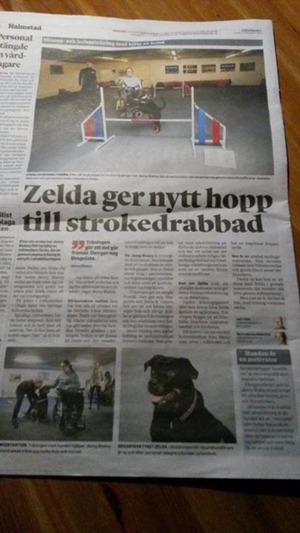 Ur Hallandsposten, tidigare i år. Jenny var mycket stolt över detta och vi är tacksamma över att reportaget hann genomföras.  Tack Jenny för allt du lärde oss. Du fattas oss.