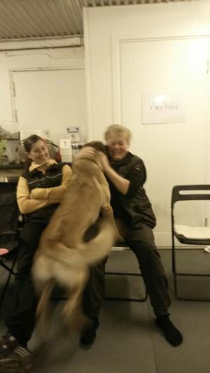 """En av kennelägarna, Birgitta Hedenberg, gratuleras av en av """"valparna"""" då hon på förmiddagen klarat appellen med sin egen hund Kalle på fina 288 poäng."""