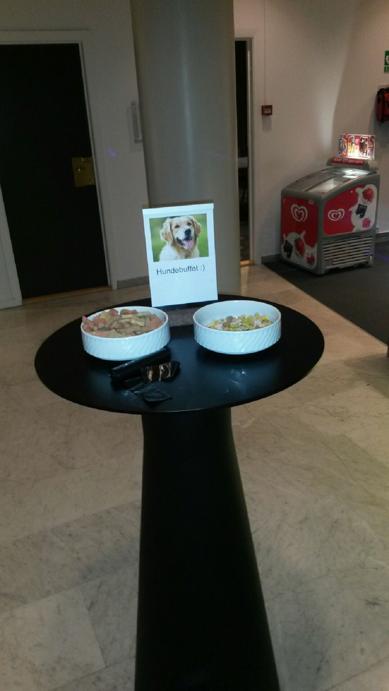Scandic såg till att gästerna med hund kände sig välkomna!
