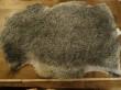 Lammskinn - stora - Skinn E