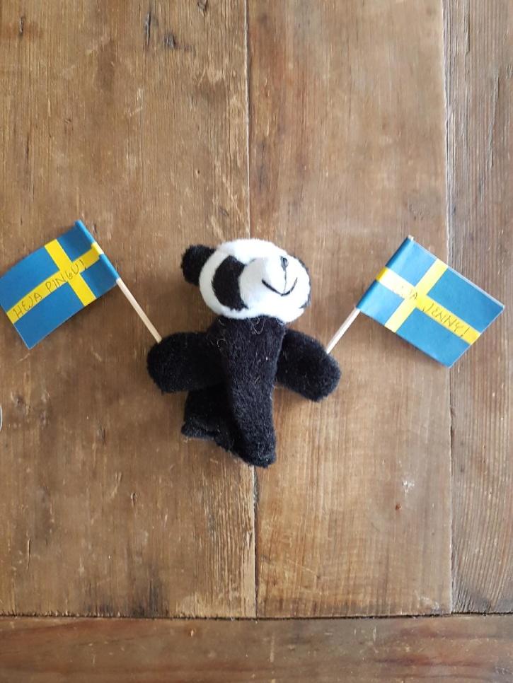 Tack Anna för världens finaste lill-Panda!