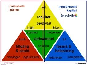 Intellektuellt kapital - ResursInsikt