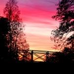 Bron hamnen kväll