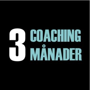 Coaching 3 månader, Annika Holmberg