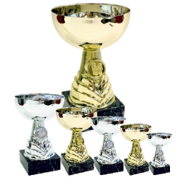 Pokal Fenton
