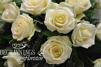 Krans vita rosor