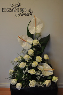 Arrangemang med anthurium -