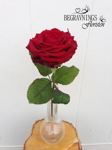Handbukett ros