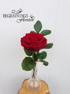 Handbukett ros med grönt - Röd (enligt bild)