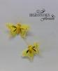 Fjärilar - Fjäril gul