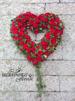 Öppet hjärta rosor