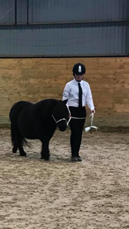 Wida qualifying to national handler.