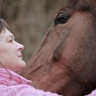 Djurkommunikation med häst