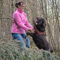 Smidigare hund med hundmassage
