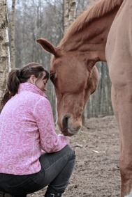 Djurkommunikation med hästar & hundar - djurkommunikatör Yvonne Roobol