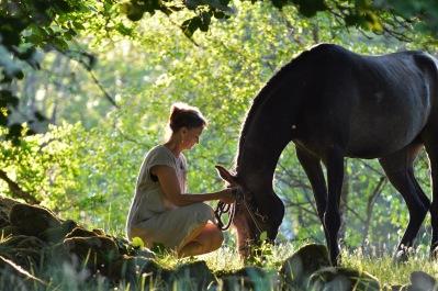 Djurkommunikation med hundar & hästar - djurkommunikatör Yvonne Roobol, Halmstad, Varberg, Falkenberg, Kungsbacka i Halland