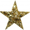 Hårspänne stjärna - Guld
