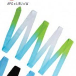 Band flerfärgat, 6 m SASAKI - Turkos/vit/grön