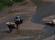 åsnor i floden boutharar