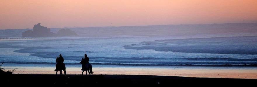 Essaouiras strand är perfekt för långa promenader eller ridturer på häst eller dromedar. Följ med på Mitt Marocko med marockoresan.se