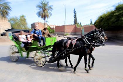 Hästdroskan är ett vanligt fordon i Marrakech