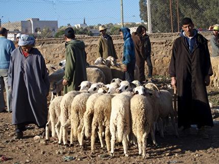 Souken i Had Draa utanför Essaouira. hålls på söndagar.